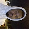 Ibrahim Jalloh